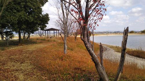 DSC_0034中洲.jpg